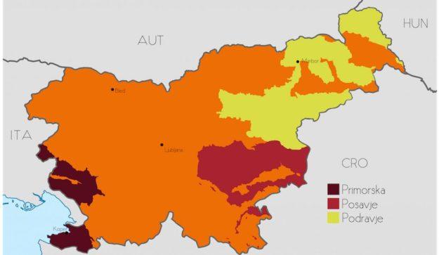 slovenia wine regions