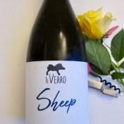 Il Verro Coda di Pecora Sheep Campania vino Italiano