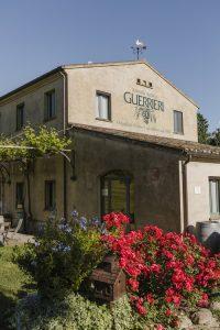 Guerrieri winery italy rosato