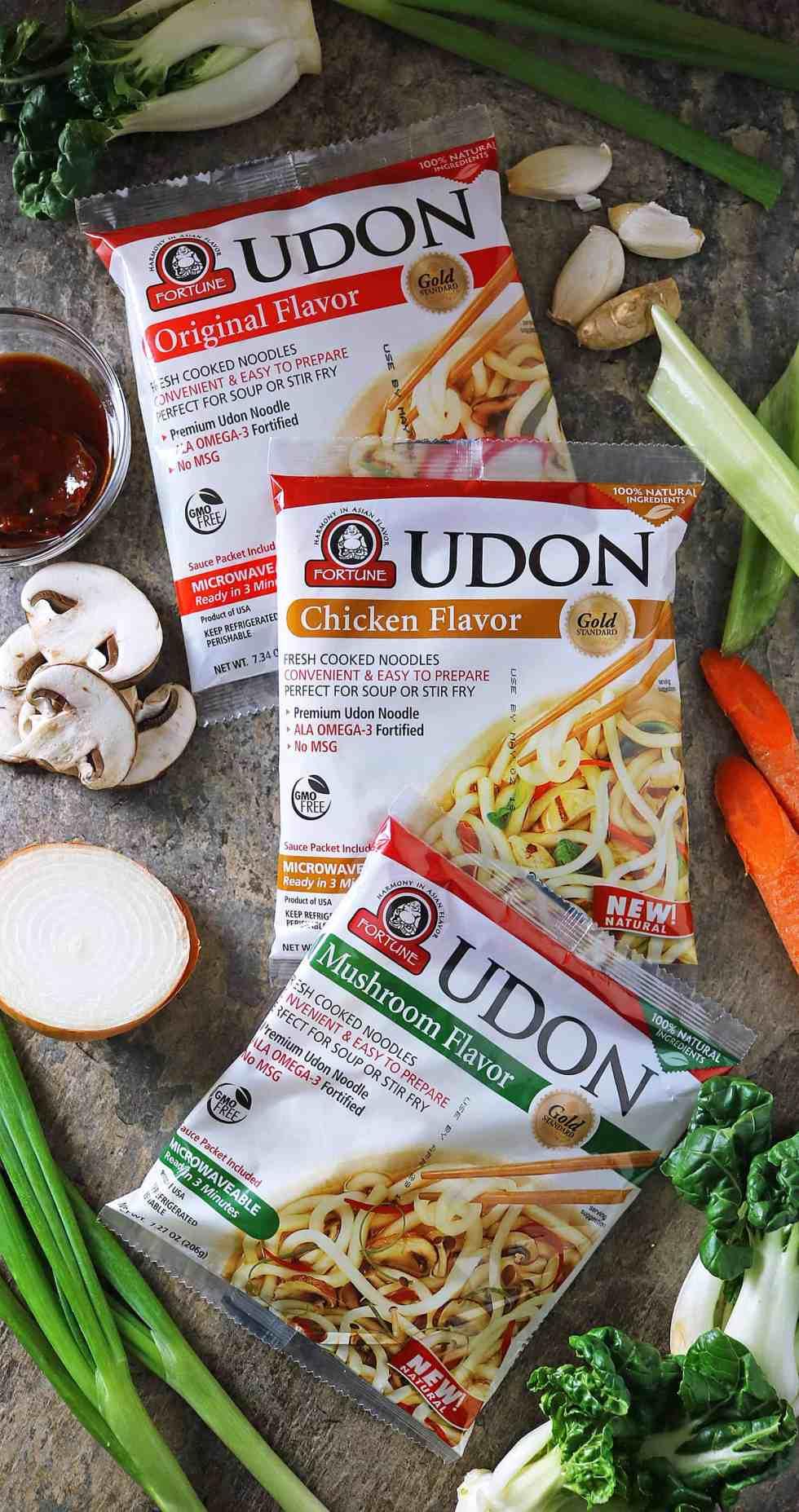 JSL Foods Udon Noodles