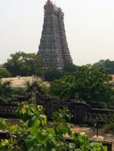 Meenakshi Temple - Madurai - photo - Karen Anderson