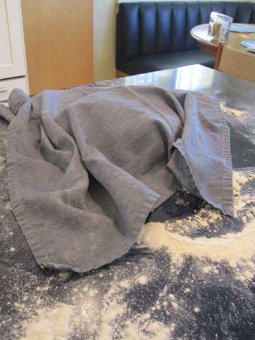 covered dough on counter for another rising
