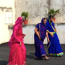 Bursts of colour - women walking in saris, Udaipur photo - Karen Anderson