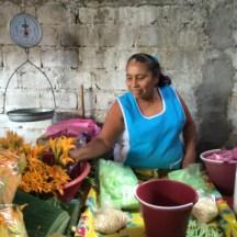 squash blossoms aren't just for Italian cuisine photo - Karen Anderson