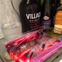 Tuck the salmon in the fridge to marinate photo - Karen Anderson