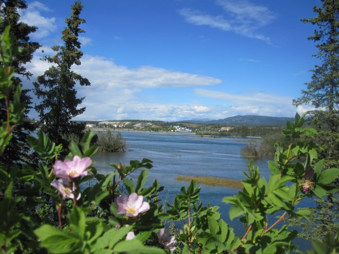 View of Whitehorse, YK