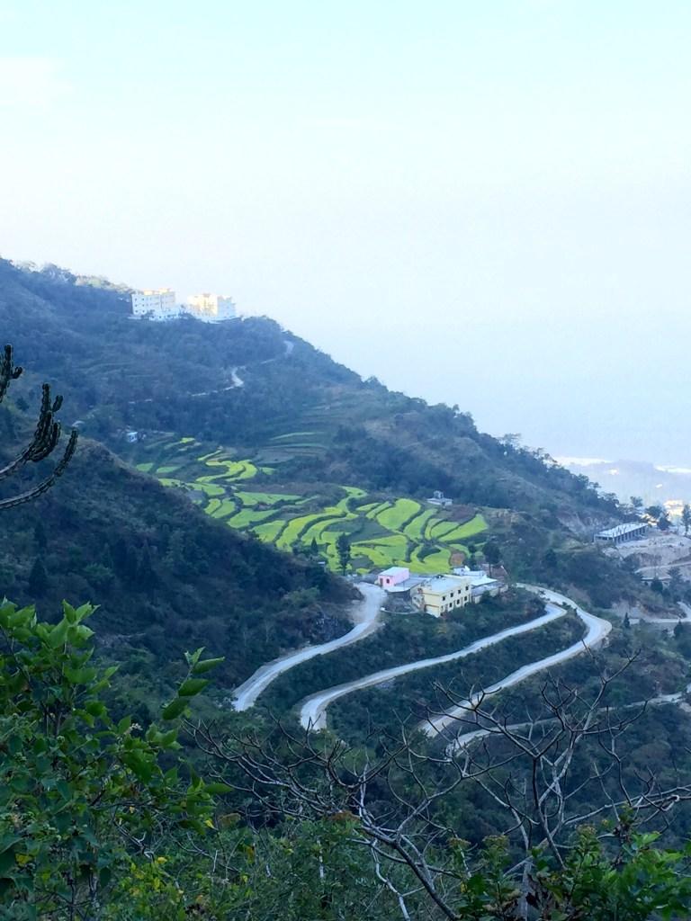 Himalayan foothills - photo credit - Karen Anderson