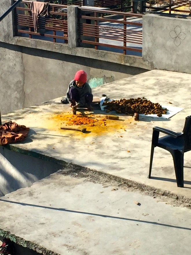 Pounding turmeric - photo credit - Karen Anderson