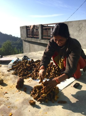 Woman with Turmeric - photo credit - Karen Anderson