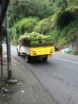 banana truck in South India - photo credit - Karen Anderson - @savouritall