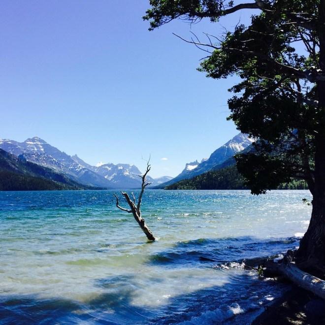 View south on Waterton Lake