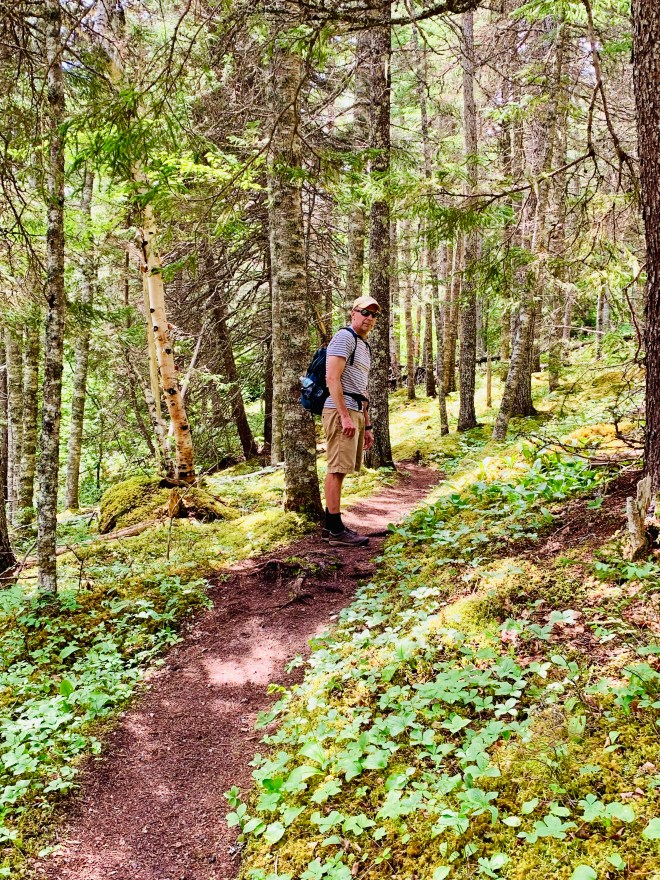 Boreal Forest of Coastal Trail, Newman Sound, NL - photo by Karen Anderson