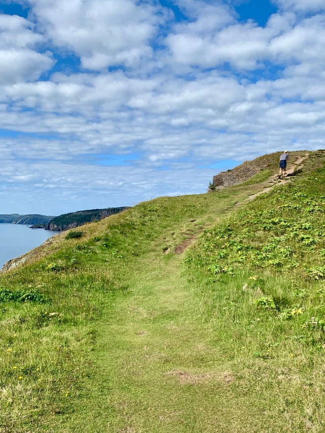 footpath on Skerwink Trail, NL - photo by Karen Anderson