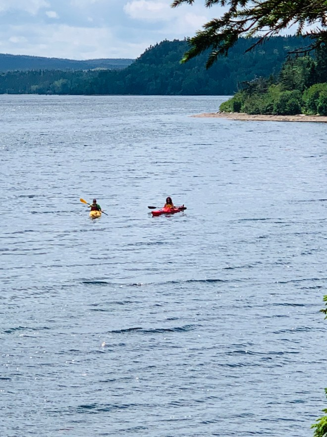 Sea kayakers, Newman Sound, NL - photo by Karen Anderson
