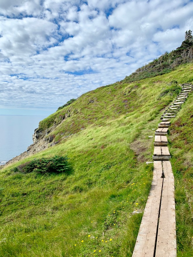 Skerwink Trail - a constructed wood path