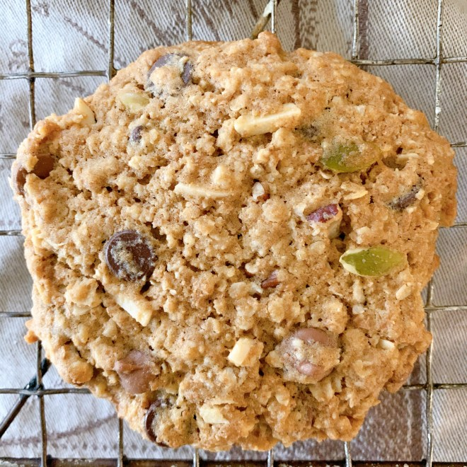 Heartland Nutri Cookies - close up of the cookie showing its ingredients