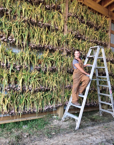 Kristin Graves of Fifth Gen Gardens - shows what a wall of garlic is