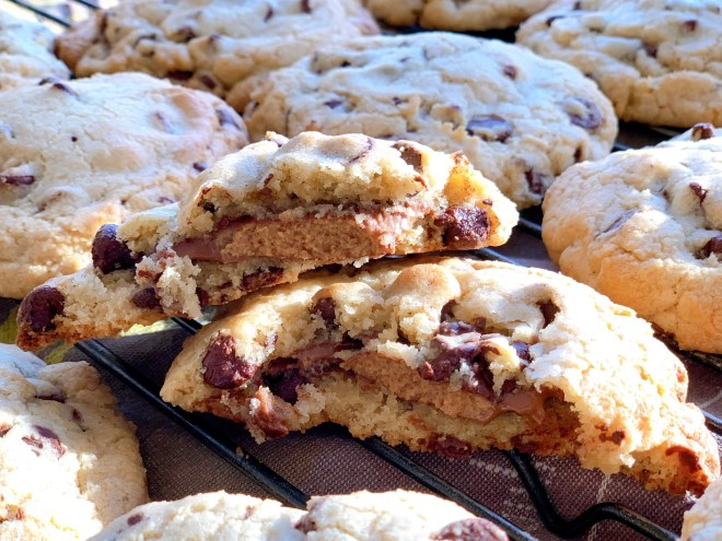 Peanut Butter Cup Chocolate Chip Stookies - side angle