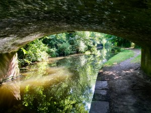 Chesterfield Canal, Wiseton