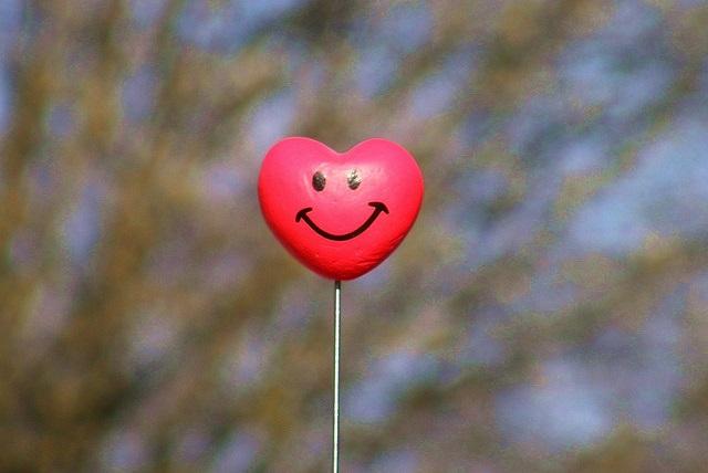 srce optimizam