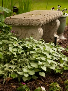 My new garden bench. It's a perfect resting spot!