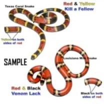 tell poisonous from harmless snakes