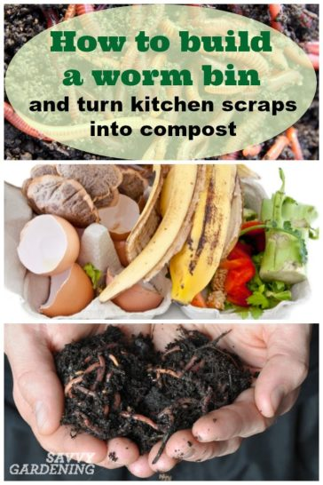Follow these easy instructions to build a worm bin for year-round indoor composting.