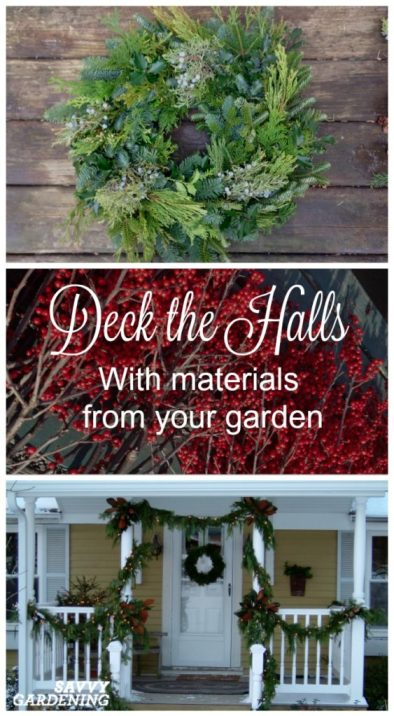 Make beautiful, homemade holiday decorations with items from your yard and garden.