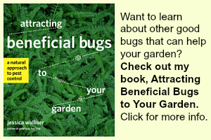 Beneficial Bugs Book