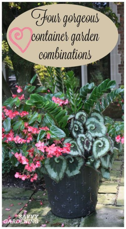 Use this container gardening cheat sheet to design four gorgeous, colorful container gardens for your patio, porch, or deck.