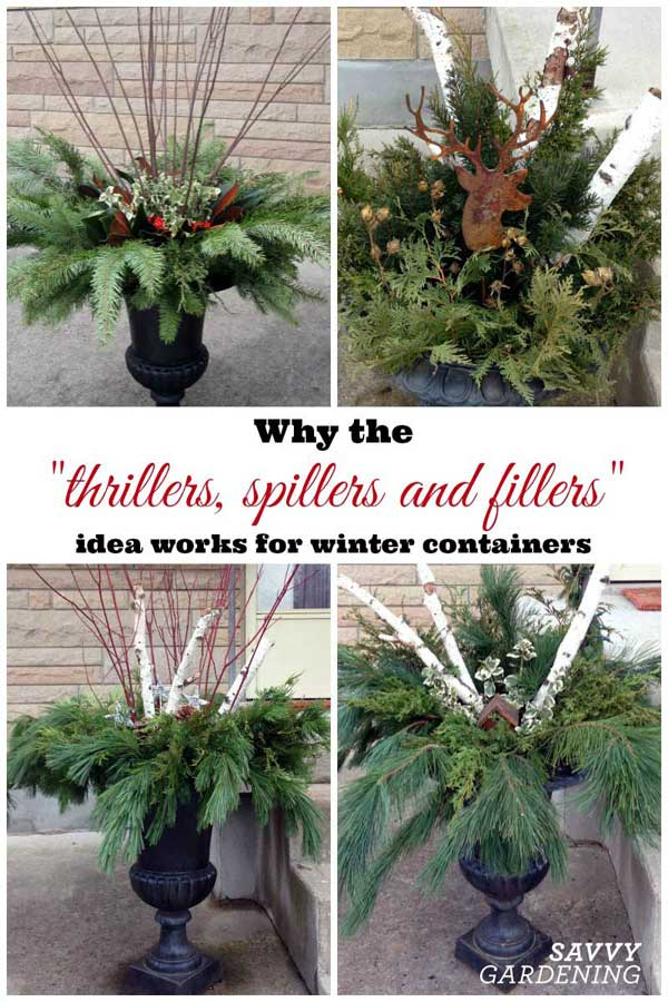 thrillers, spillers, and fillers in holiday containers