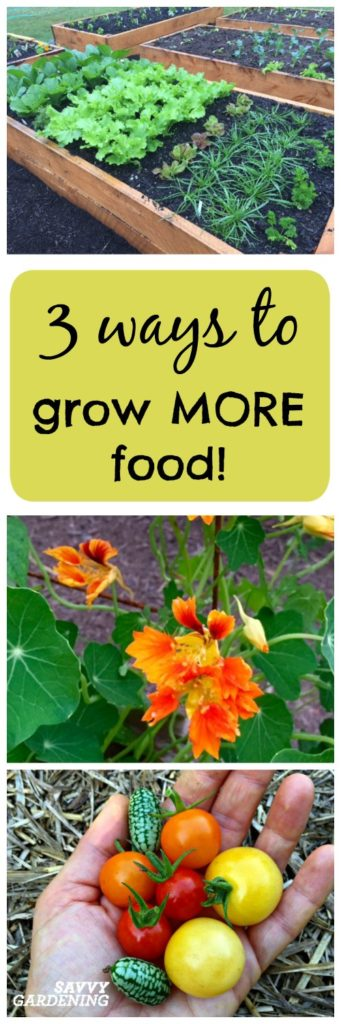 Learn 3 easy ways to grow MORE food!