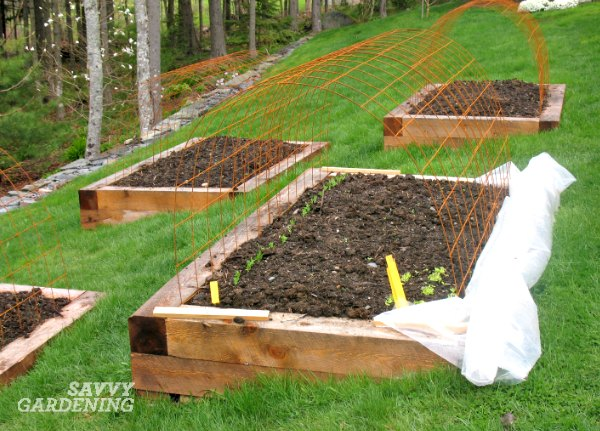 one of my best vegetable gardening tips a home garden doesnt have to be large to be productive even small beds can shave some serious dollars off your - Vegetable Garden Soil