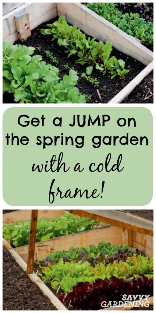 Get a jump start on the spring garden  with a cold frame!