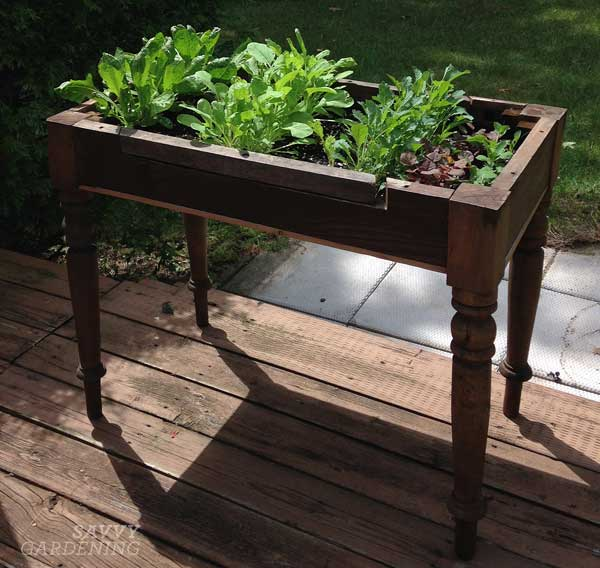 upcycling garden ideas: salad table