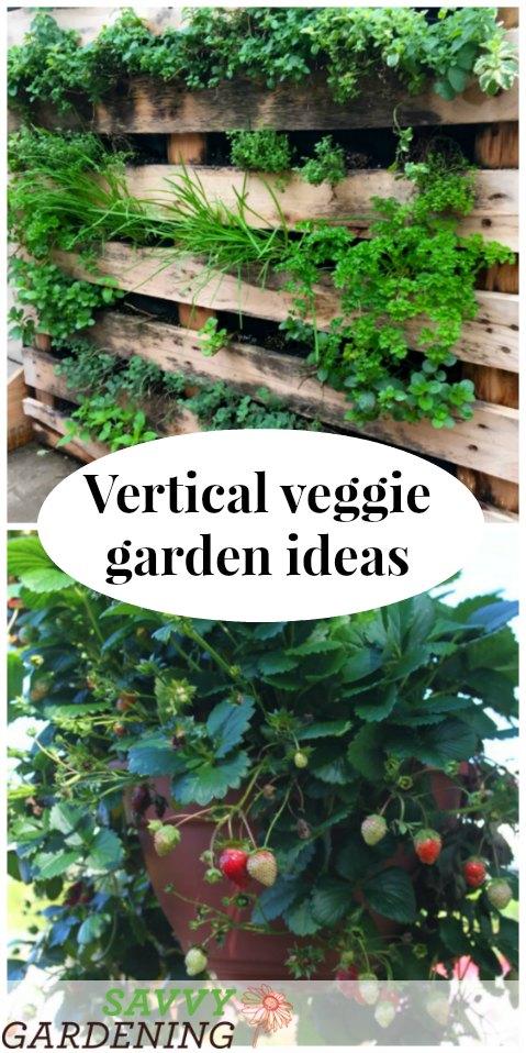 Vegetable Stand Designs : Vertical vegetable garden ideas