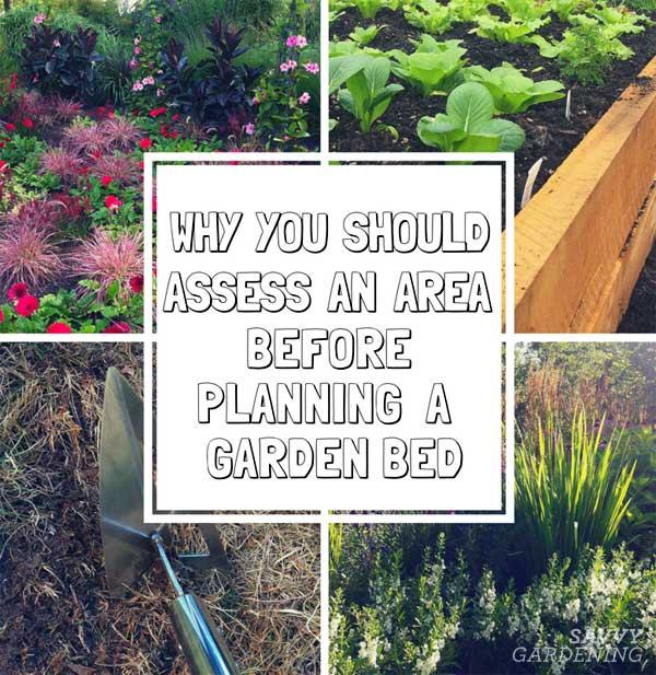 howto plan a garden bed
