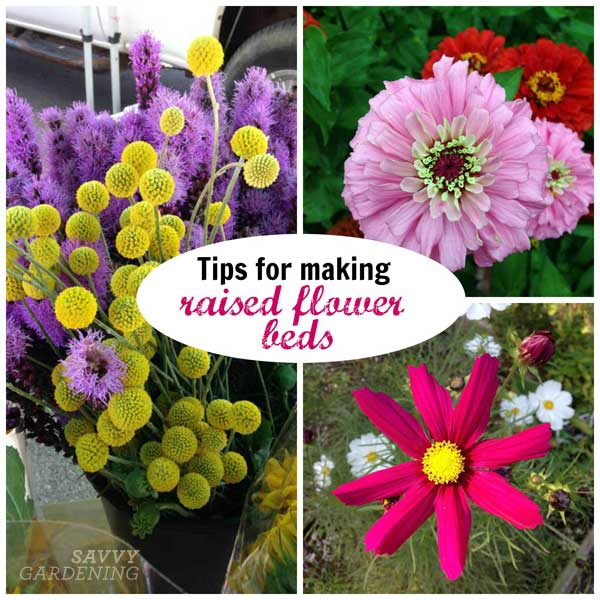 tips for making raised flower beds