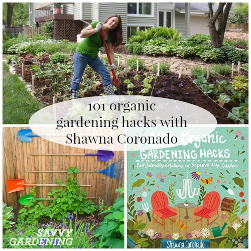 Get inspired with best-selling author, Shawna Coronado and her clever garden hacks.