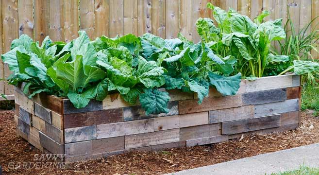 preparing a raised bed garden