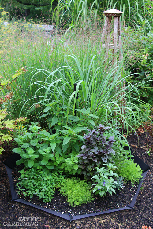 Follow these step-by-step instructions for building this fun, up cycled container herb garden.