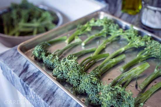 Aspabroc 'Broccolini'