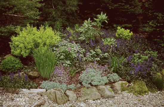 Perennial Garden Mulches Are Different From Garden Walkway Mulches.