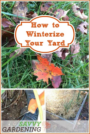 Fall gardening checklist: How to winterize your yard