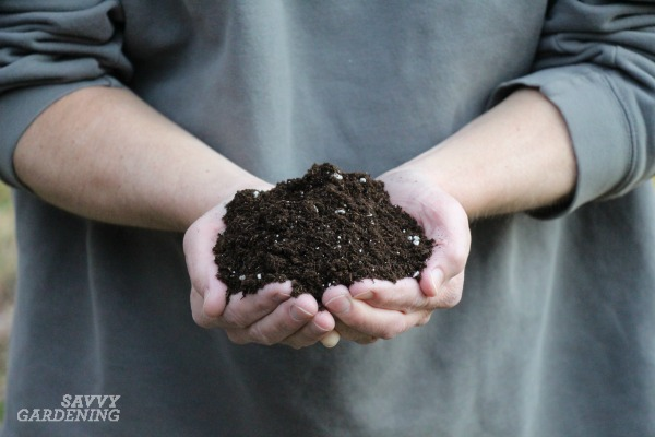 The best soil blend for container gardening.