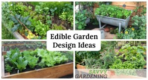 Get inspired with these easy ideas for designing a food garden.