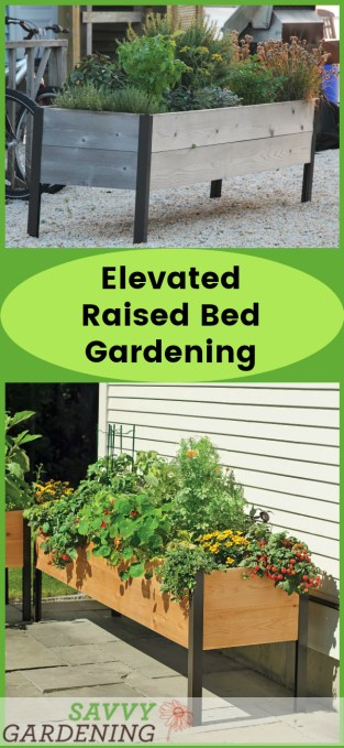 Elevated raised bed gardening is easy and fun! Grow lots of veggies, fruits, herbs, and flowers with this useful technique. (AD)
