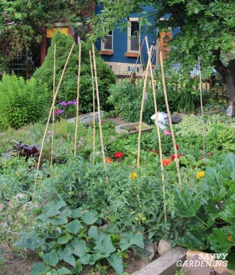 Include vertical elements in your edible garden.
