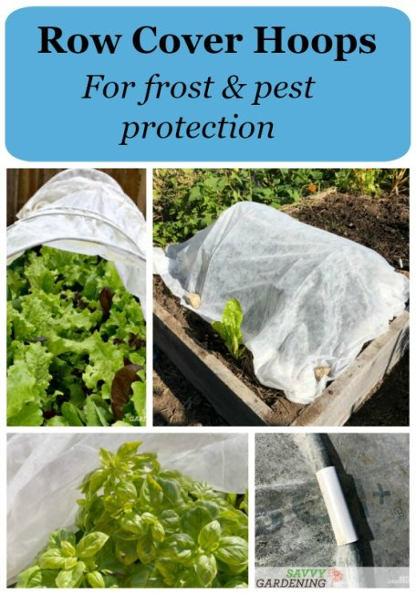 Learn how to use row cover tunnels to protect vegetables from pests and frost.