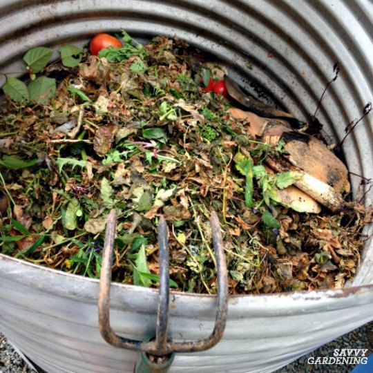 Compost is a rich soil amendment.